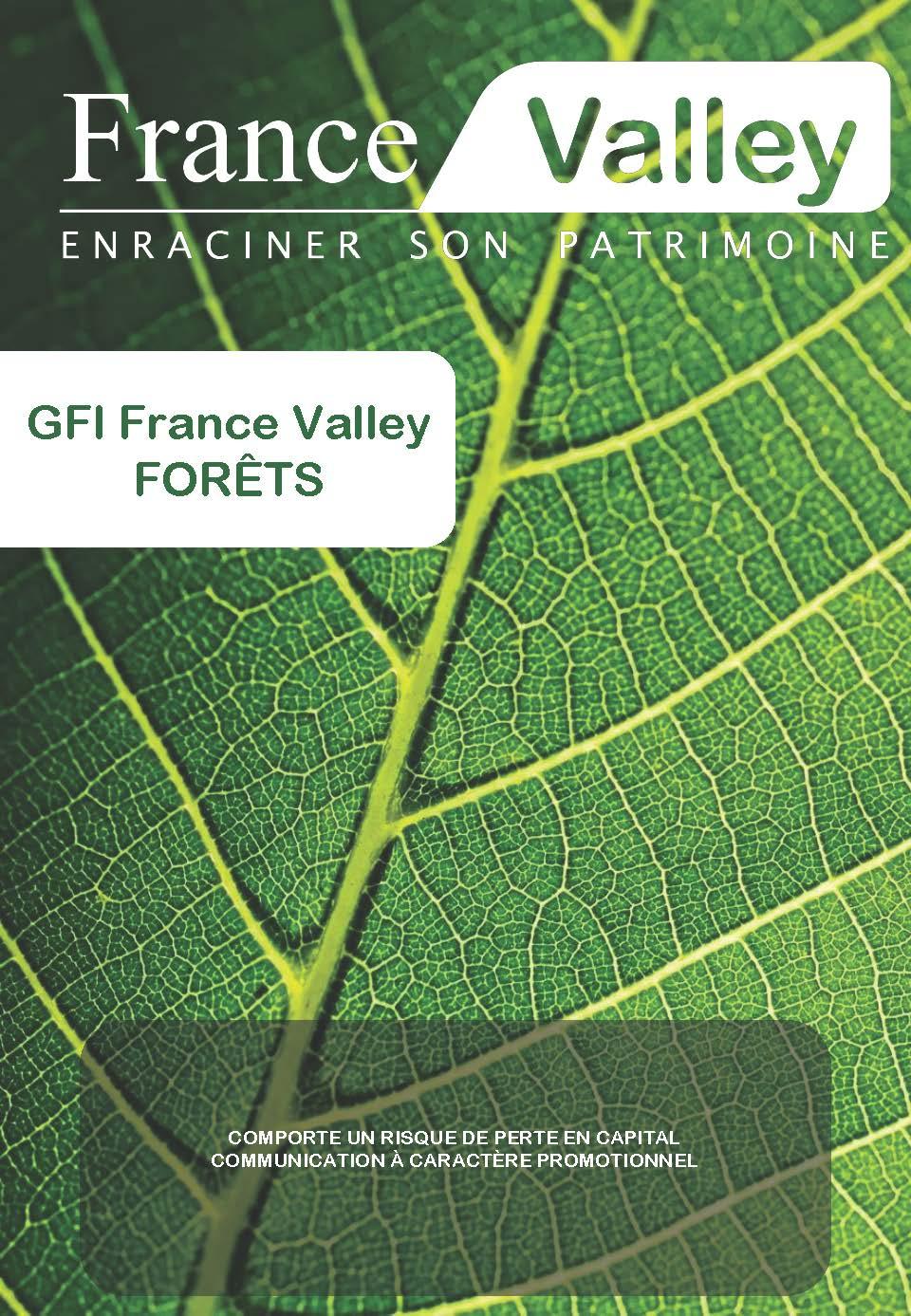 GFI FRANCE VALLEY